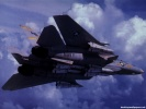F-14 Tomcat wallpaper